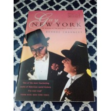 Gay New York  the Making of the Gay Male World 1890-1940 George Chauncey