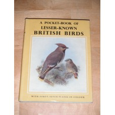 A Pocket Book of Lesser Known British Birds - Willett and Hall 1962