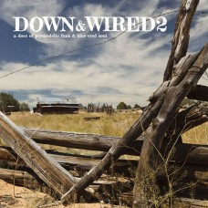 Down and Wired 2 - A Dose of Psychedelic Funk and Blue-Eyed Soul